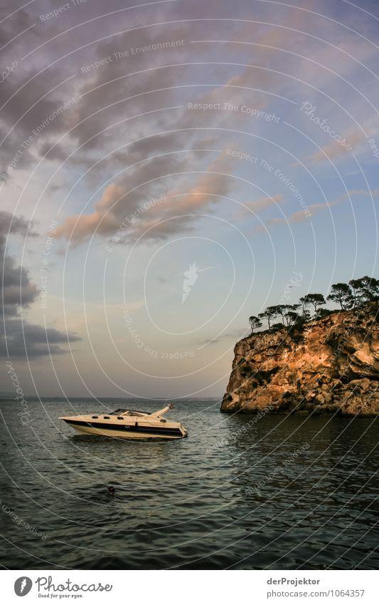 Mallorca von seiner schönen Seite 58 – Abendstimmung Natur Ferien & Urlaub & Reisen Pflanze Sommer Meer Landschaft Wolken Freude Tier Strand Umwelt Gefühle