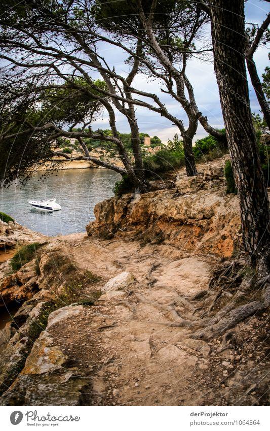 Mallorca von seiner schönsten Seite 48 - Dein Weg, dein Boot Natur Ferien & Urlaub & Reisen Pflanze Sommer Baum Meer Landschaft Tier Wald Umwelt Gefühle Küste Wege & Pfade Freizeit & Hobby Wellen Tourismus