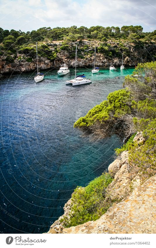 Mallorca von seiner schönen Seite 68 – Bucht mit Segelbooten Natur Ferien & Urlaub & Reisen Pflanze Sommer Meer Landschaft Freude Tier Ferne Strand Umwelt