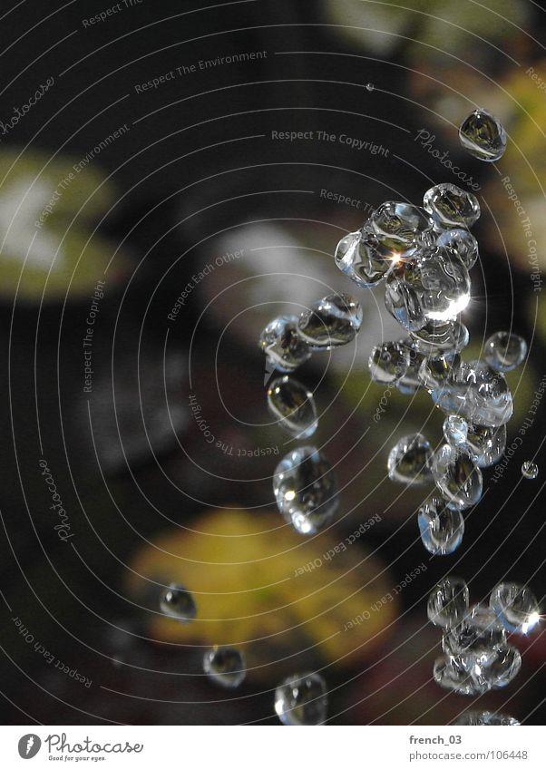 zero gravity Luft Wasser Wassertropfen Tropfen fliegen Flüssigkeit nass rund Physik Schwerkraft Klarheit Schweben Anziehungskraft aufwärts abwärts Kollision