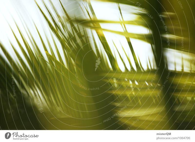 Sommerwind. Kunst ästhetisch Zufriedenheit Idylle friedlich grün Palme Palmenwedel Palmendach Sommerurlaub Urlaubsstimmung Wellness ruhig Sonne Karibik Farbfoto