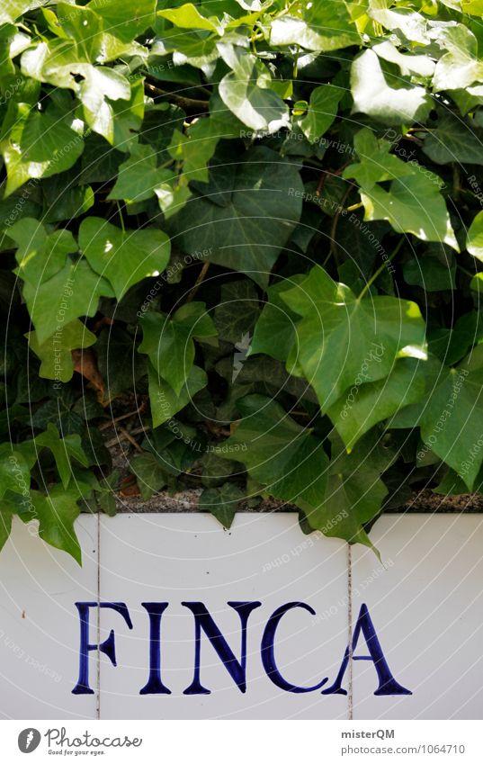 FINCA. Kunst ästhetisch grün Ferienhaus Spanien Hecke Mallorca Blatt mediterran Garten Farbfoto Gedeckte Farben Außenaufnahme Detailaufnahme Experiment Muster