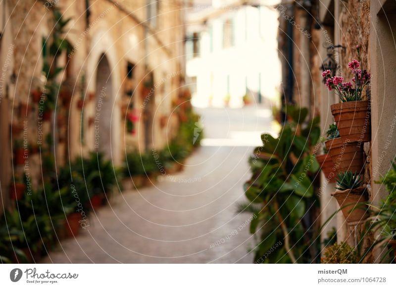Topfgasse. Umwelt Natur ästhetisch Gasse Spanien Mallorca Valldemossa Blumentopf Straße Kleinstadt mediterran südländisch Farbfoto Gedeckte Farben Außenaufnahme