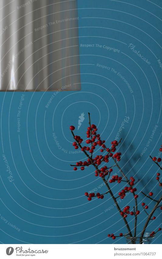 Beerenbude Stil Häusliches Leben Wohnung Dekoration & Verzierung Lampe Wand Pflanze Winter Vogelbeeren Blumenstrauß ästhetisch schön blau rot weiß Vase Farbfoto