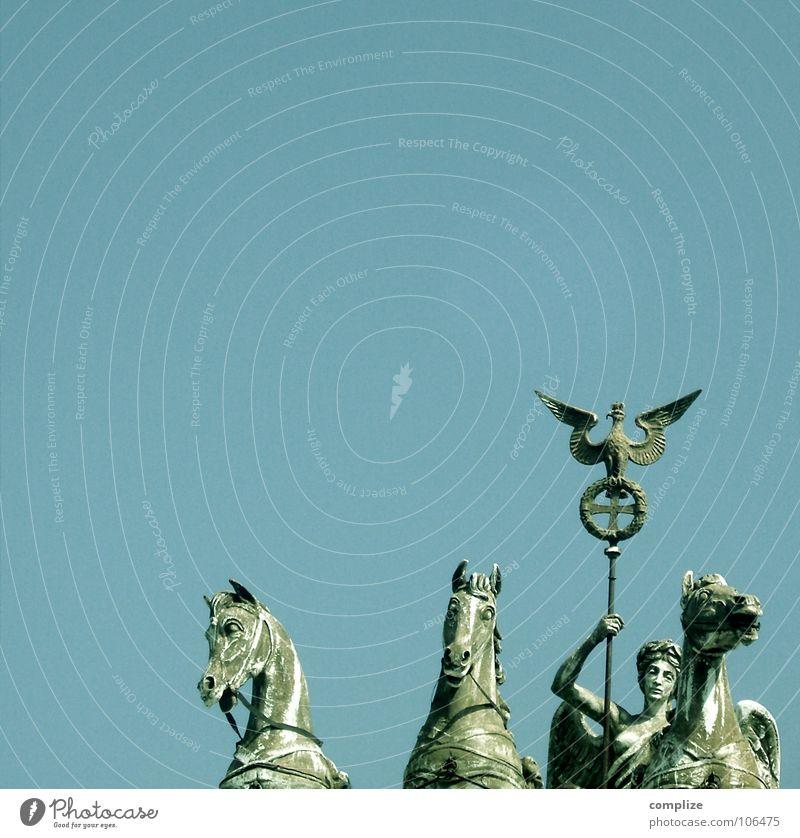 Quadriga / Brandenburger Tor Reitsport Kunst Skulptur Himmel Schönes Wetter Hauptstadt Bauwerk Sehenswürdigkeit Wahrzeichen Denkmal Pferdekutsche Vogel Flügel