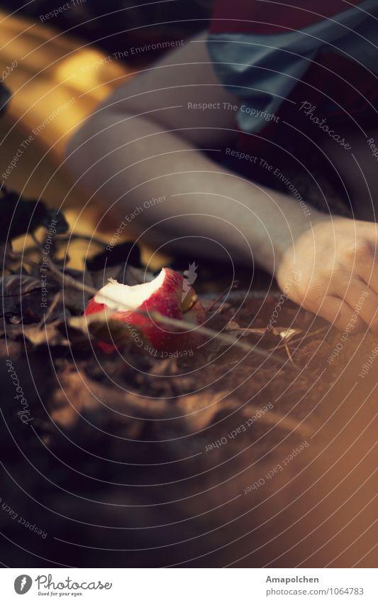::15-10:: schön Wald Tod Lebensmittel Frucht träumen Angst Ernährung schlafen Apfel Filmindustrie Theaterschauspiel böse Alkohol Märchen stagnierend
