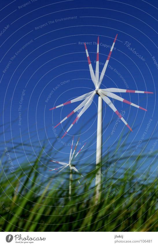 Generators II Himmel Luft Kraft Feld Industrie Energiewirtschaft Elektrizität Netz Klarheit Windkraftanlage Unternehmen drehen Sportveranstaltung beweglich