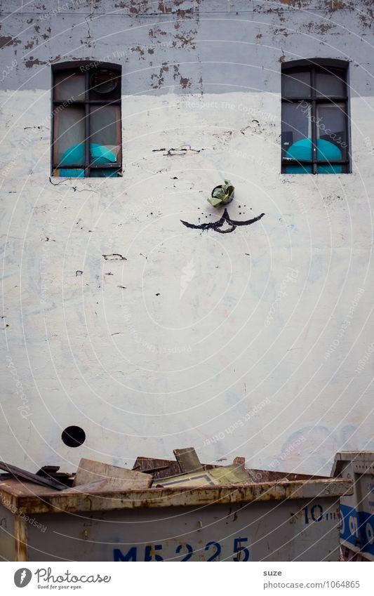 Kater-Stimmung Lifestyle Stil Design Haus Kunst Kultur Jugendkultur Stadtrand Mauer Wand Fassade Fenster Katze außergewöhnlich dreckig lustig niedlich verrückt