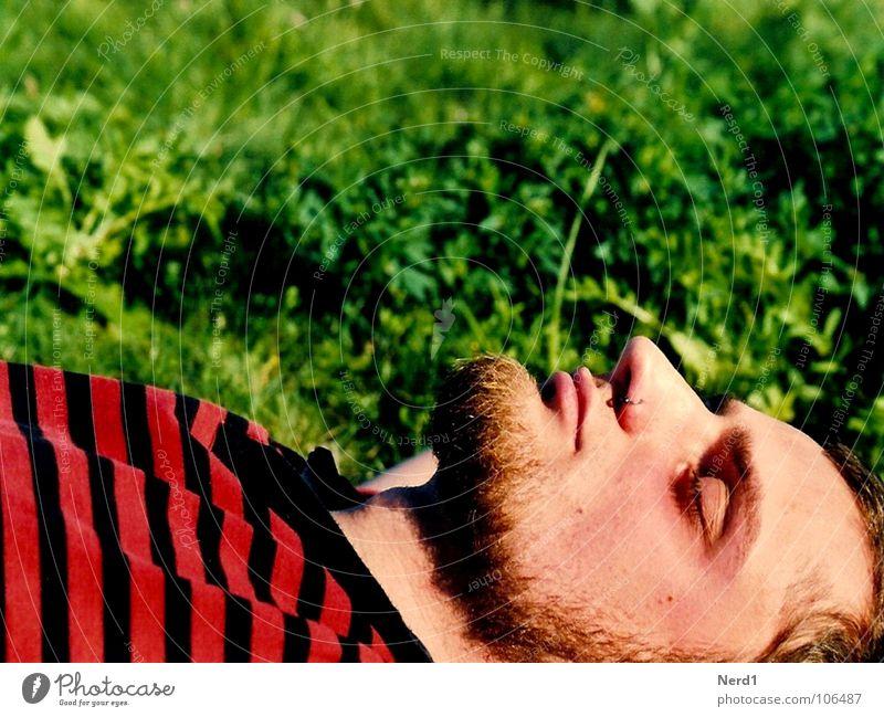 Kein Käfer Wiese grün Mann rot schlafen Streifen Bart Makroaufnahme Nahaufnahme liegen Nase Kopf Porträt Männergesicht Kinnbart Erholung genießen ruhig