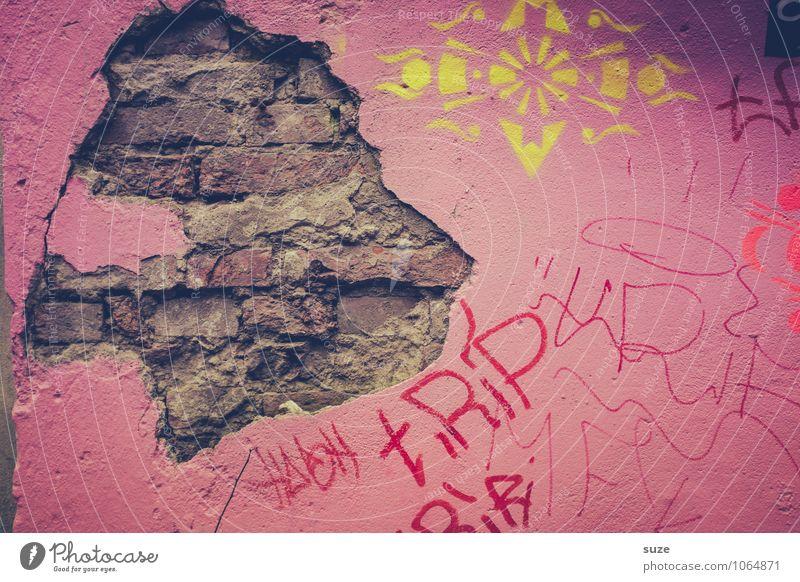 König der Löwen alt Wand Graffiti lustig Mauer Kunst rosa Fassade Kopf dreckig authentisch Vergänglichkeit kaputt Hamburg verfallen Verfall
