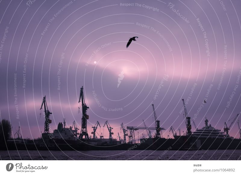 Industrie-Romantik Sonne Wolken Umwelt Gefühle Kunst Stimmung Deutschland Business Arbeit & Erwerbstätigkeit fantastisch Hamburg Baustelle