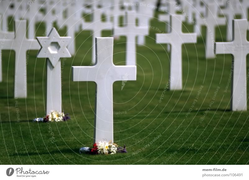 gräber 2 Denkmal Soldatenfriedhof sinnlos Grab Davidstern Judentum Krieg Friedhof Armee Gras Ewigkeit grün Weltkrieg Souvenir Ermahnung Erinnerung Gedächtnis