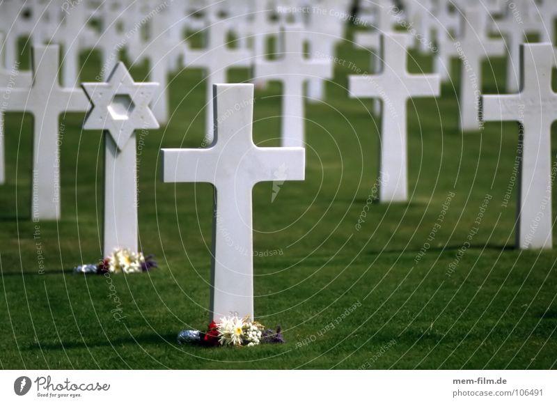 gräber 2 Mensch grün Blume Traurigkeit Gras Tod Ordnung Perspektive Rücken Vergänglichkeit Macht Ewigkeit Rasen Unendlichkeit Trauer Frieden