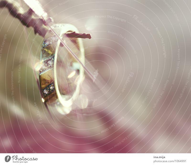 Ring Liebe glänzend Zusammensein Gold Geschenk Zeichen rund Hochzeit Verliebtheit Schmuck Reichtum reich Valentinstag Treue Sympathie