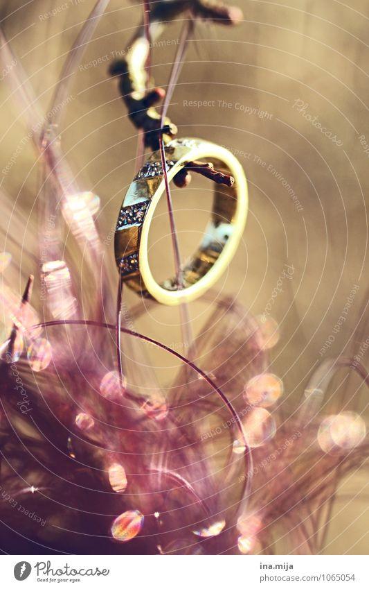 o Feste & Feiern Hochzeit Accessoire Schmuck Ring Holz Metall Gold Zeichen Sympathie Liebe Verliebtheit Treue Romantik Liebesaffäre Trennung Verlobung Ehering