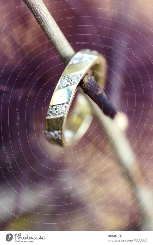O Accessoire Schmuck Ring Holz Gold Zeichen glänzend Sympathie Zusammensein Liebe Verliebtheit Treue Frieden Liebesaffäre Liebeskummer Liebesbekundung