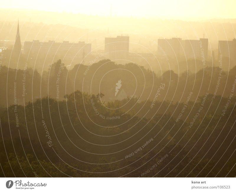 sag dem schönen augenblick: ewig währt am längsten. Natur Sonne Stadt ruhig Ferne Farbe träumen Landschaft braun Nebel Hochhaus Aussicht Dresden Verschiedenheit