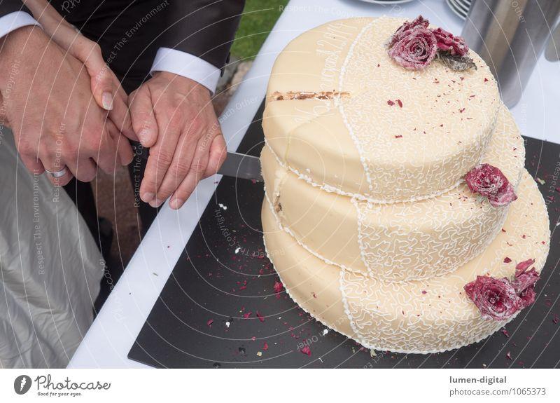 Hochzeitstorte Kuchen Hand 2 Mensch Zusammensein Ewigkeit Hoffnung Leben Liebe Zukunft Ehepaar Heirat Torte Backwaren messer schneiden Rosen Liebespaar Treue