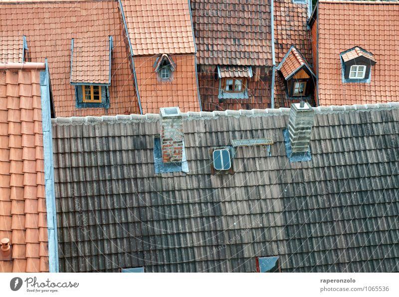 alt. neu. Quedlinburg Kleinstadt Stadt Stadtzentrum Altstadt Menschenleer Haus Fenster Dach Schornstein Häusliches Leben authentisch grau rot Schutz Tradition