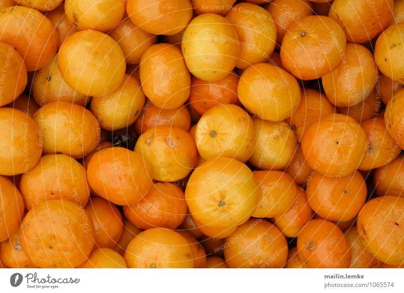 Mandarinen exotisch Frucht ästhetisch außergewöhnlich Duft fest frisch Gesundheit gut rund saftig schön mehrfarbig orange Farbfoto Außenaufnahme Menschenleer