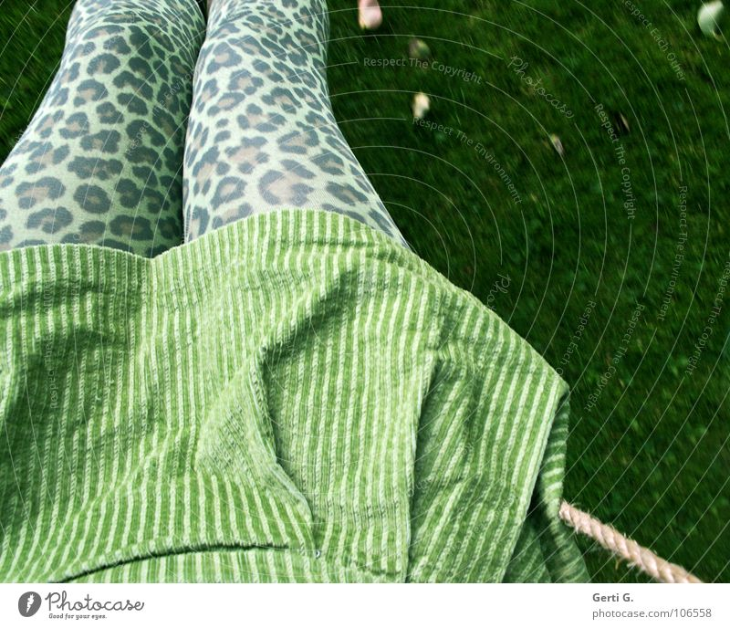 Leo, look! Frau grün Freude Blatt Wiese Herbst Spielen Bewegung Beine lustig Bekleidung verrückt Fröhlichkeit Rasen Schnur