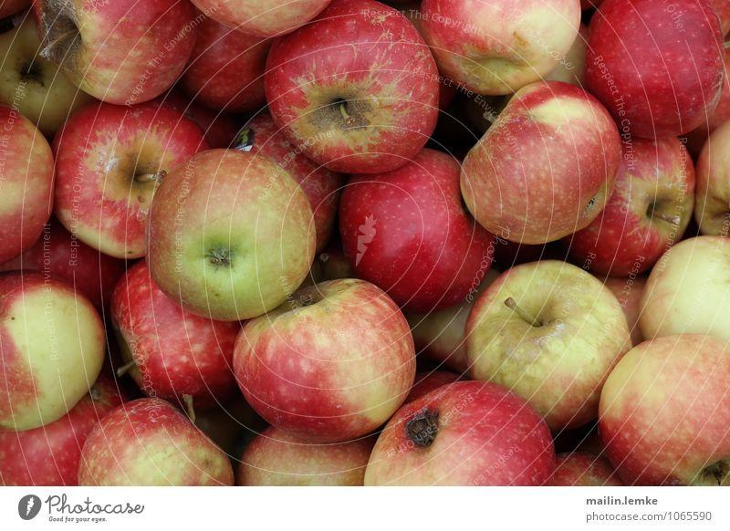 Apfel schön rot gelb Gesundheit Frucht frisch lecker Markt