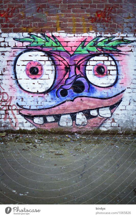 schräger Vogel Kunst Jugendkultur Graffiti Mauer Wand Backsteinwand außergewöhnlich exotisch gruselig lustig verrückt bizarr Farbe Kultur rebellieren Stadt Auge