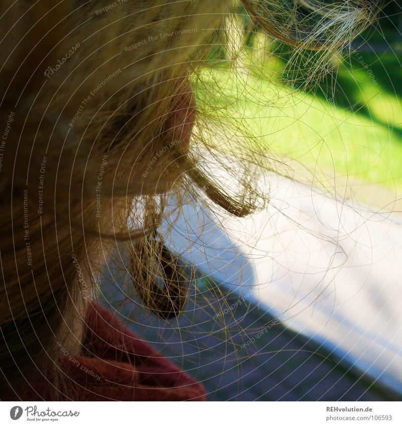 Gewissheit Aussicht grün Blick Zukunft Frau Zweck Konzentration Garten Park nach vorne sehen beobachten Haare & Frisuren Kopf Ohrringe Ablenkung Locken Wegsehen