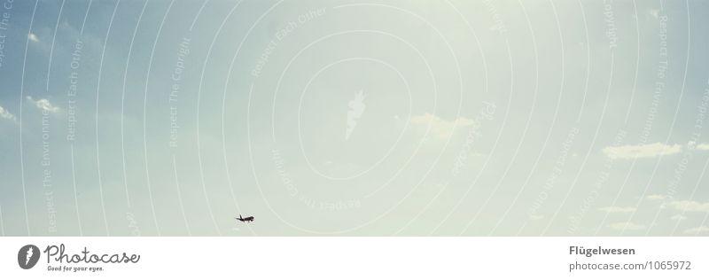 Germanias letzter Flug fliegen Luftverkehr fliegend Flugzeug Himmel Wolken