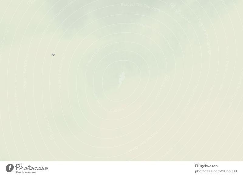 Flying High Ferien & Urlaub & Reisen Tourismus Ausflug Abenteuer Umwelt Natur Himmel Wolken Luftverkehr Flugzeug Passagierflugzeug Propellerflugzeug