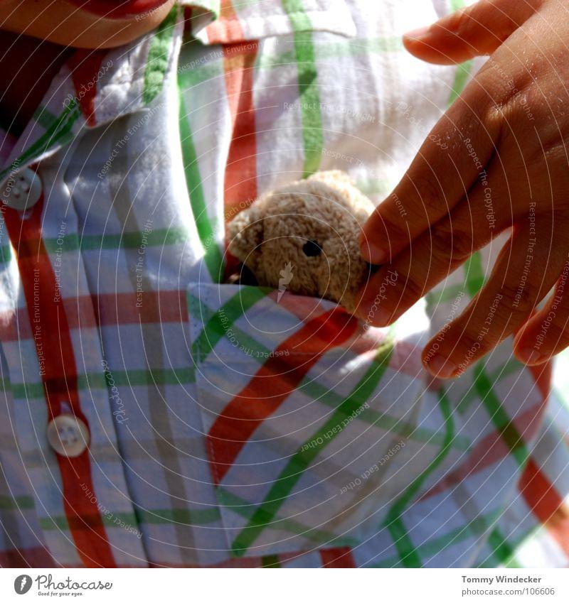 Versteck dich Mensch Kind Hand schön Mädchen Sommer Freude Liebe Spielen Junge klein lachen Glück Zusammensein Freizeit & Hobby Finger