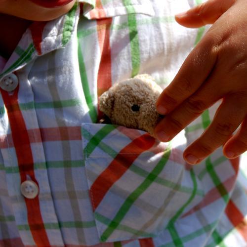 Versteck dich Teddybär Stofftiere Kind Kleinkind kindlich Spielzeug Kuscheln niedlich klein Fell süß Nachkommen Glücksbringer Spielen Geschenk Hemd Hand