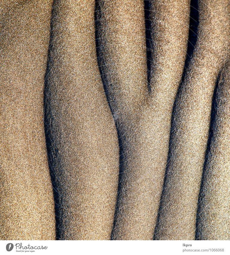 abstrakte Textur eines trockenen Ferien & Urlaub & Reisen Tourismus Ausflug Sommer Strand Insel Umwelt Natur Urelemente Erde Sand Klima Felsen Küste Fluss Wüste