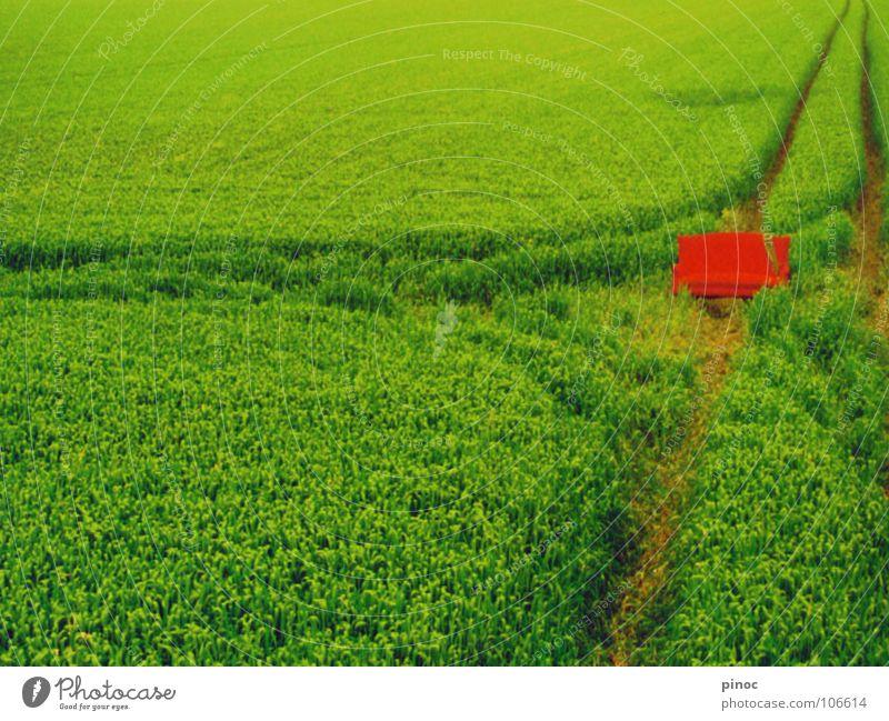rotgrün grün rot Erholung Feld lustig Sofa Möbel skurril