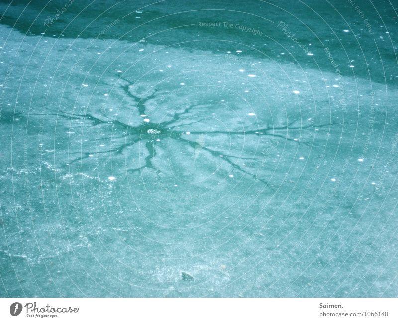riss im eis wasn scheiß Natur Wetter Eis Frost See kalt gefroren gebrochen Winter grün Farbfoto Außenaufnahme Textfreiraum unten Tag