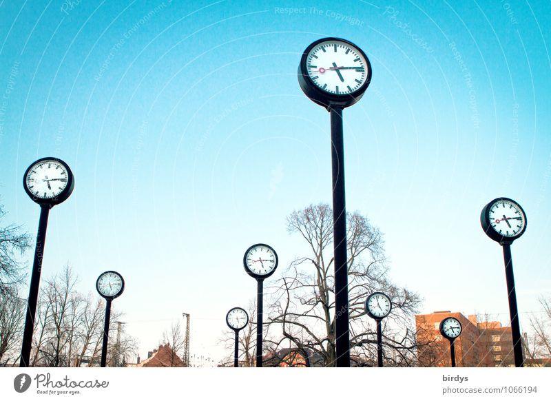 Uhrenvergleich Baum Kunst Zeit außergewöhnlich Park groß Zukunft Zifferblatt rund Vergangenheit viele Eile Wolkenloser Himmel Stress Termin & Datum
