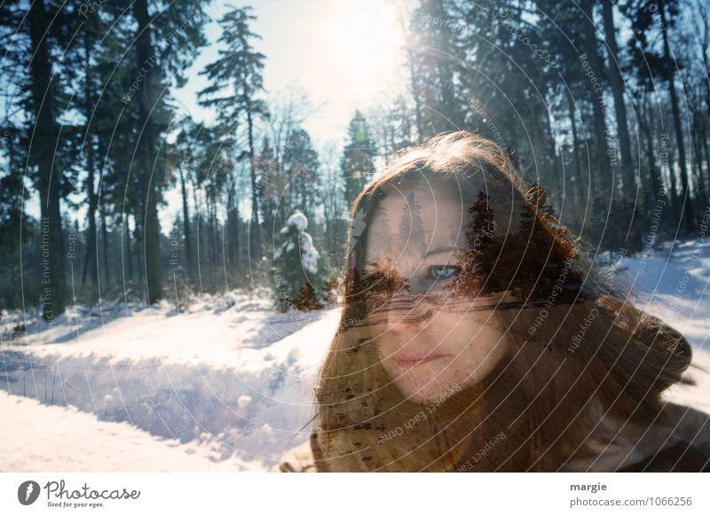 Winterspaziergang Mensch Frau Jugendliche Junge Frau Baum Sonne ruhig Winter Wald Gesicht Erwachsene Auge Leben Wege & Pfade Schnee feminin