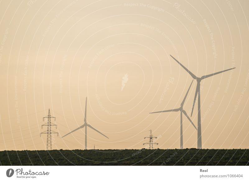 In der Dämmerung Himmel Landschaft Wiese Energiewirtschaft orange Nebel Energie Elektrizität Zukunft Windkraftanlage Umweltschutz Strommast Windrad umweltfreundlich Stromkraftwerke Erneuerbare Energie