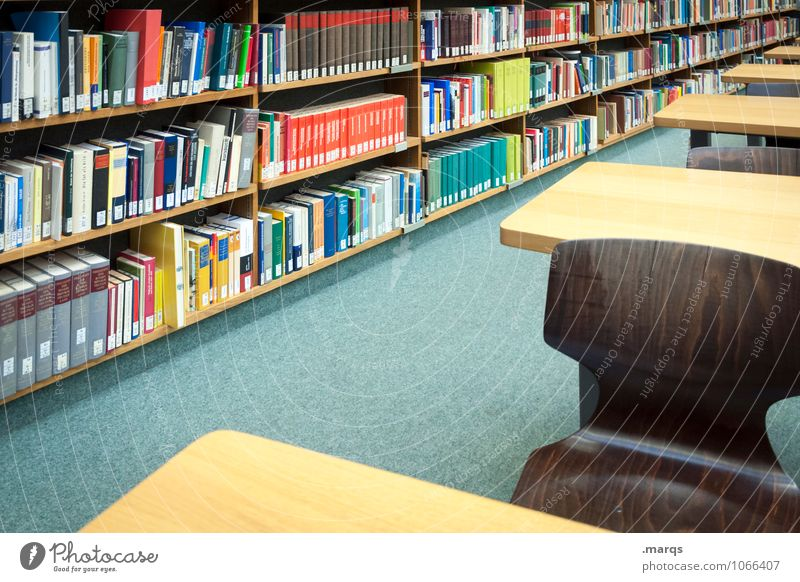 Bibliothek Bildung Wissenschaften Erwachsenenbildung lernen Studium Student Prüfung & Examen Urkunde Karriere Erfolg Tisch Stuhl Bücherregal Buch Denken lesen