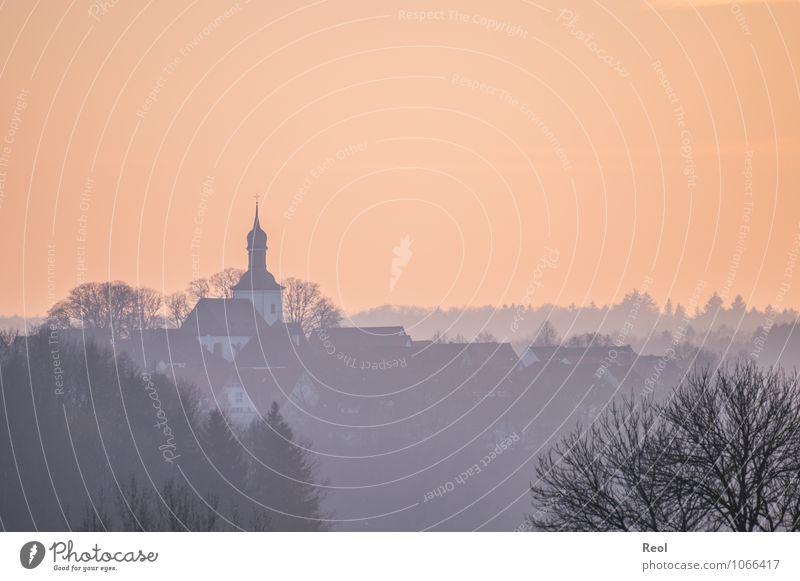 Oranger Himmel Urelemente Luft Wolkenloser Himmel Sonnenaufgang Sonnenuntergang Herbst Winter Baum Wald Hügel Horizont Silhouette Kreis Paderborn Dorf Skyline