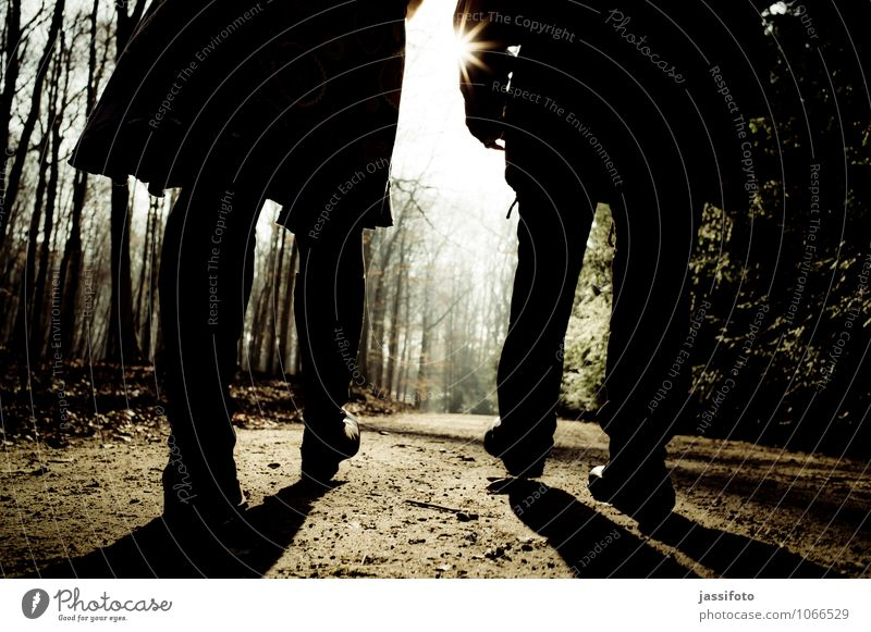 lichtwärts Mensch feminin Frau Erwachsene Beine Fuß 2 Sonne Sonnenlicht Winter Schönes Wetter Baum Park Wald Fußgänger Wege & Pfade gehen Zusammensein