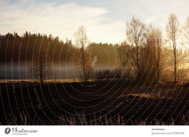 Himmel Natur Sonne Baum Erholung Landschaft Wolken Winter Wald Feld Erde