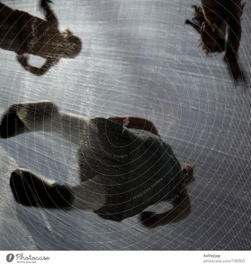 federleicht Frau Kind Freude Freiheit springen Freizeit & Hobby frei Netz Frieden Verbindung Gewicht Spinne Raster hüpfen Trampolin