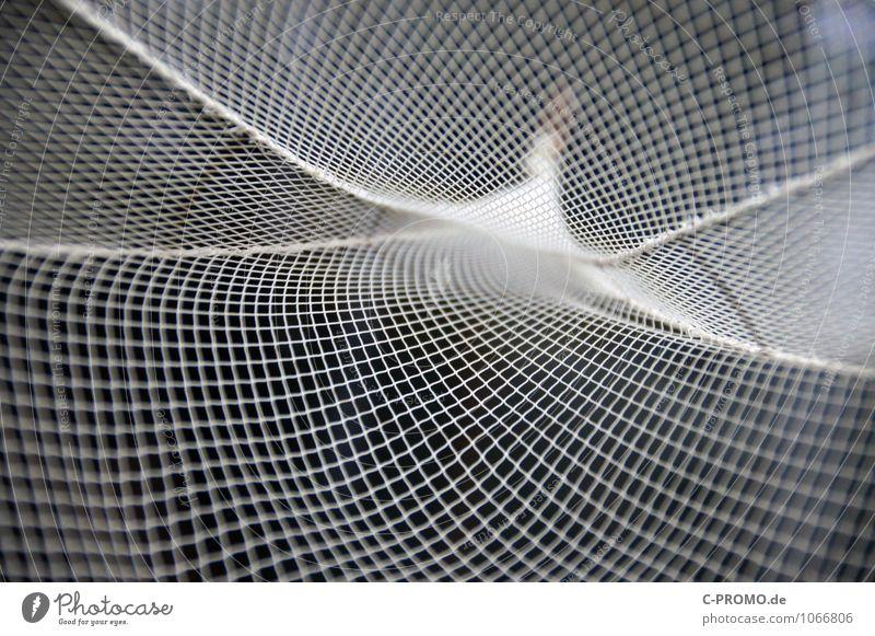 Ins Netz gegangen 1 Fischer Fischereiwirtschaft fangen ästhetisch Symmetrie abstrakt Fischernetz Linearität Kurve schwingen Hintergrund neutral Farbfoto