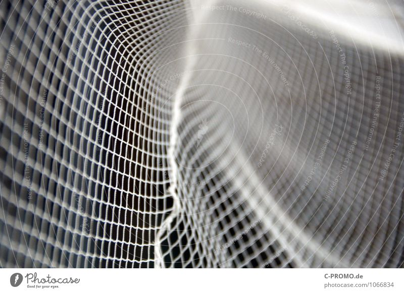 Ins Netz gegangen 6 Fischer Fischereiwirtschaft fangen ästhetisch Symmetrie abstrakt Fischernetz Linearität Kurve Hintergrund neutral Farbfoto Menschenleer