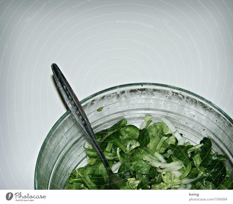 Salat Blattsalat Beilage Dressing Diät Vorspeise Dessert Einladung Bestandsaufnahme Schneider Vegetarische Ernährung Gastronomie Gesundheit grüner Salat