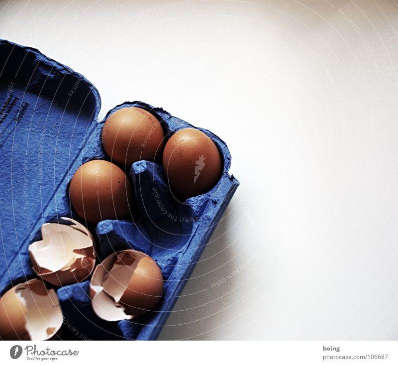 Eier Legebatterie Haushuhn Packung konventionell Lebensmittel Verpackung Schutz kaputt Teigwaren kochen & garen Freilandhaltung Vogelgrippe 10 Eiklar Protein