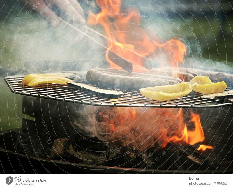 grillen Grill Grillen Bratwurst Würstchen Picknick Sommer Ferien & Urlaub & Reisen Freizeit & Hobby Sonntag Feiertag Vatertag Nachmittag Mittag grün Fleisch