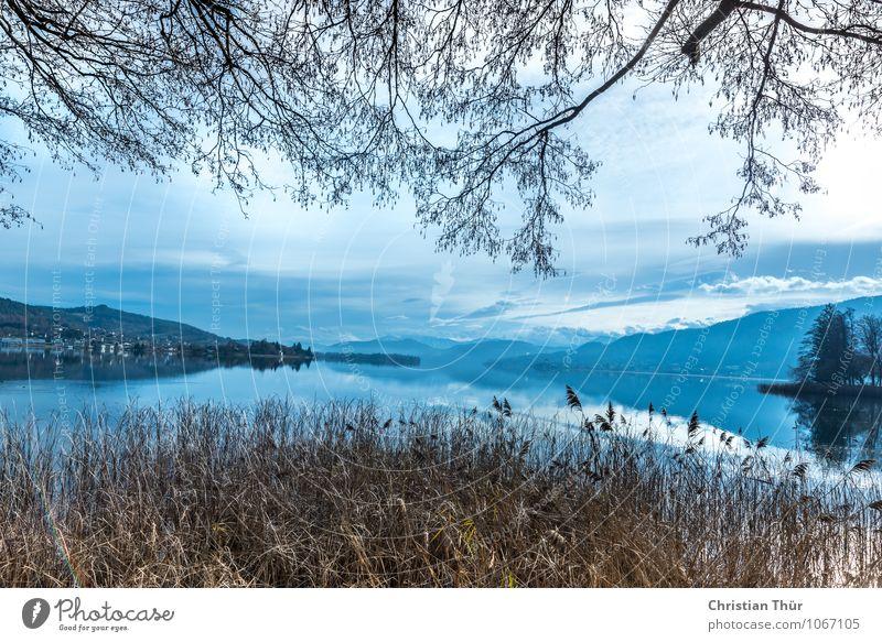 Seeblick Ferien & Urlaub & Reisen Baum Erholung Landschaft ruhig Wolken Ferne Strand Winter Berge u. Gebirge Leben Herbst Gras Sport Freiheit Schwimmen & Baden