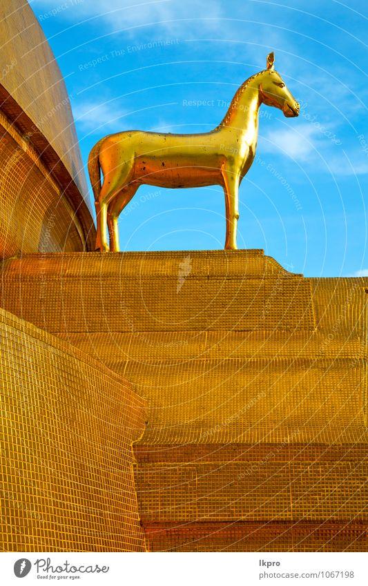 Himmel Ferien & Urlaub & Reisen weiß Tier Wand Architektur Gebäude Mauer Religion & Glaube Stein Kunst Metall dreckig Tourismus Gold Kirche